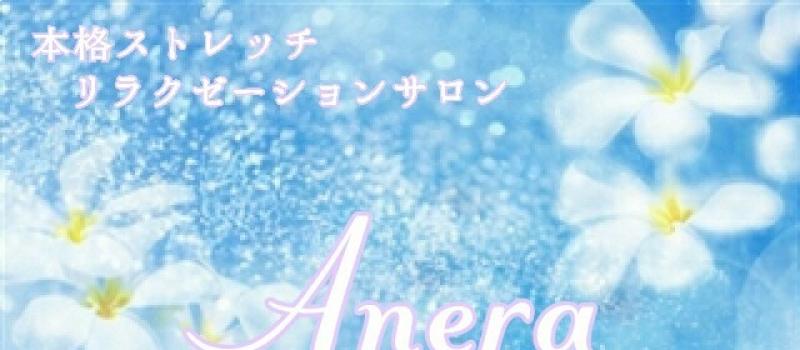 本格ストレッチ&リラクゼーションサロン~Anera~