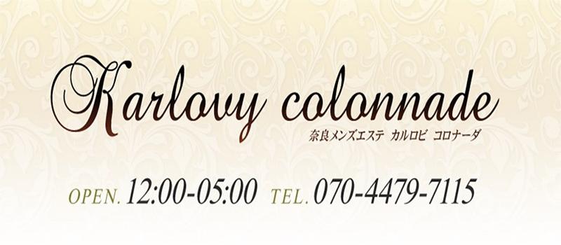 Karlovy colonnade(カルロビ コロナーダ)
