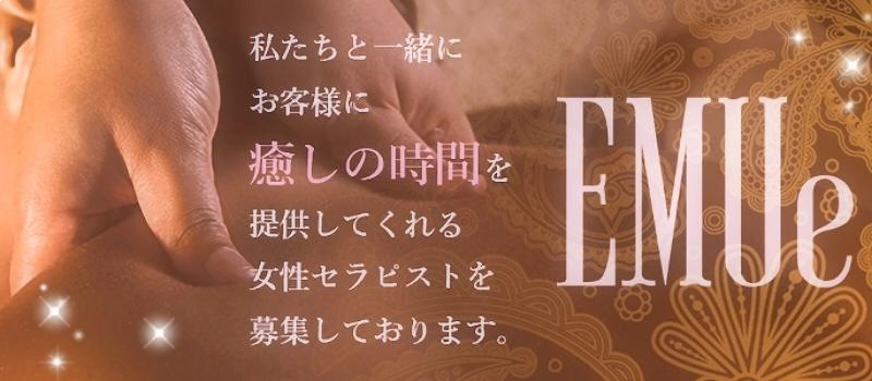 EMUe~エミュ